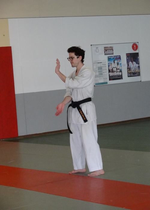 karate-thibaut-kata